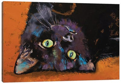 Upside Down Kitten  Canvas Art Print