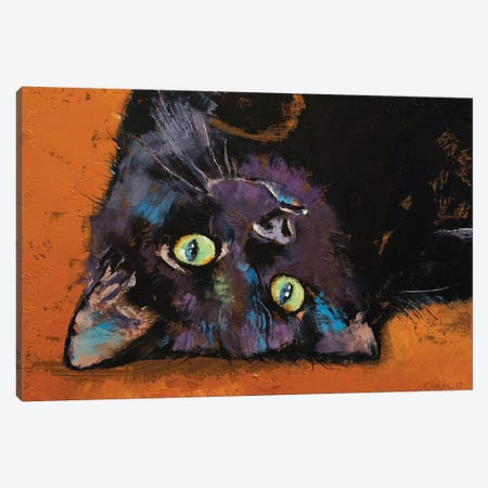 Upside Down Kitten  Canvas Print #MCR214} by Michael Creese Art Print