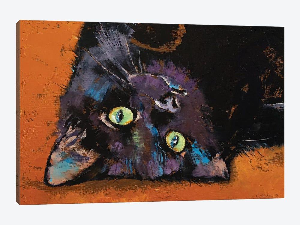 Upside Down Kitten  by Michael Creese 1-piece Art Print