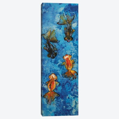 Butterfly Tail Goldfish Canvas Print #MCR221} by Michael Creese Art Print