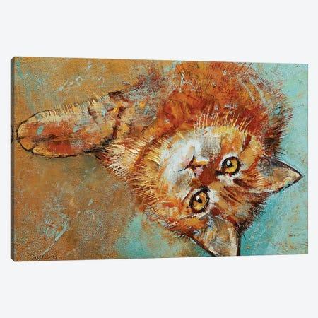 Little Tiger Canvas Print #MCR230} by Michael Creese Canvas Artwork