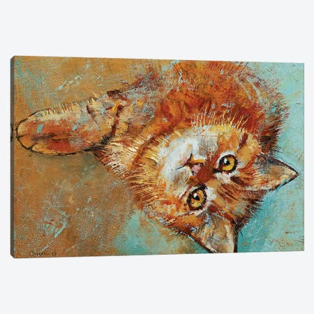 Little Tiger Canvas Print #MCR230} by Michael Creese Canvas Artwork