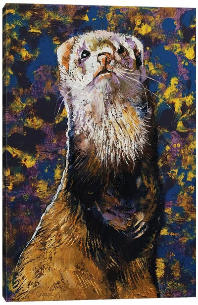 Regal Ferret Canvas Art Print