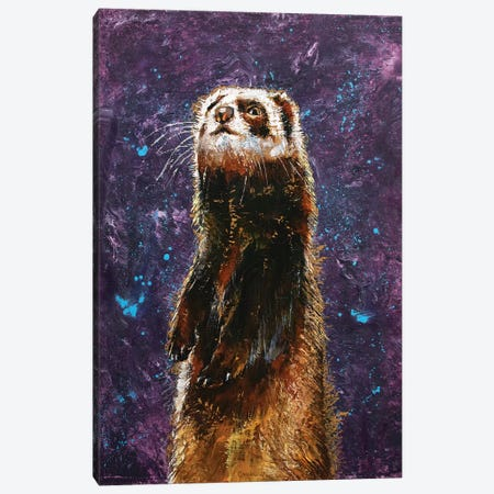 Sable Ferret Canvas Print #MCR233} by Michael Creese Canvas Art