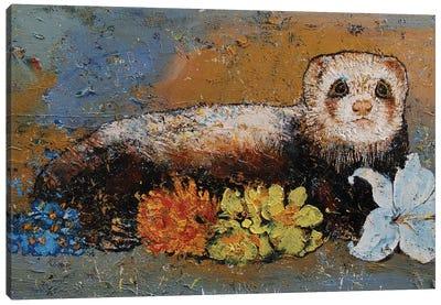 Ferret Splendor Canvas Art Print