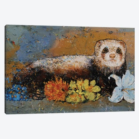 Ferret Splendor Canvas Print #MCR241} by Michael Creese Canvas Art Print