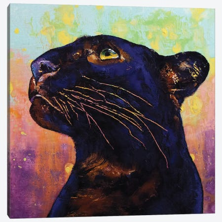 Panther Colors Canvas Print #MCR245} by Michael Creese Canvas Art