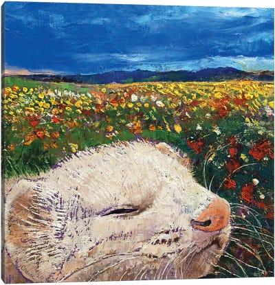 Ferret Dreams Canvas Art Print
