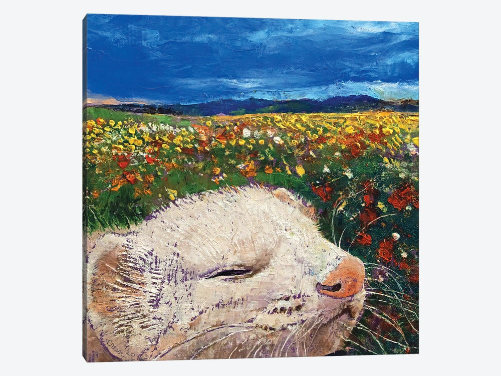 Ferret Dreams 1-piece Canvas Print