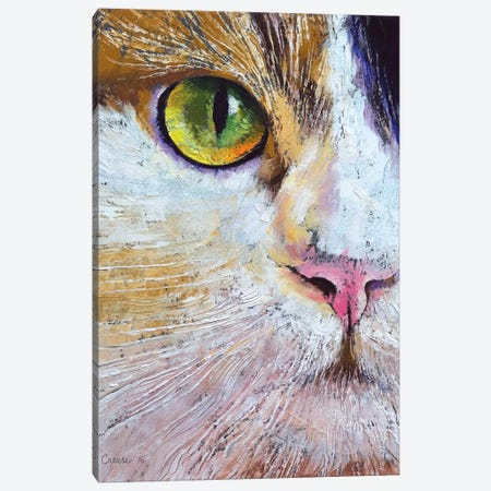 Calico Cat Canvas Print #MCR24} by Michael Creese Art Print