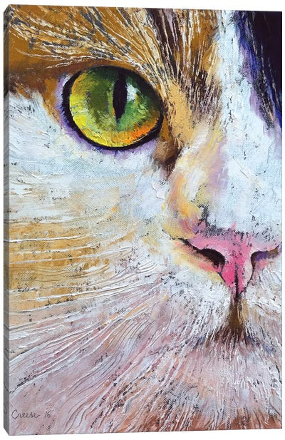 Calico Cat Canvas Art Print
