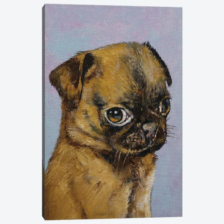 Pug Puppy Canvas Print #MCR257} by Michael Creese Canvas Print
