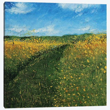 Wisconsin Meadow Canvas Print #MCR263} by Michael Creese Canvas Art Print
