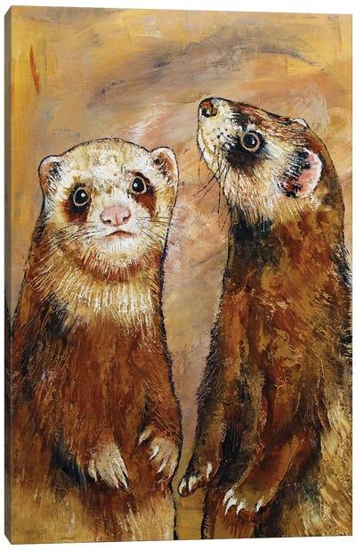 Ferrets Canvas Art Print