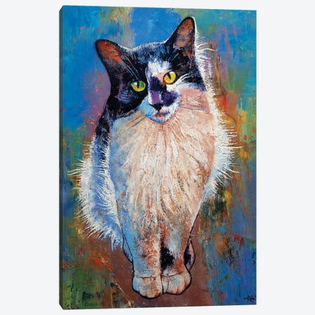 Black And White Cat Canvas Print #MCR273} by Michael Creese Canvas Art