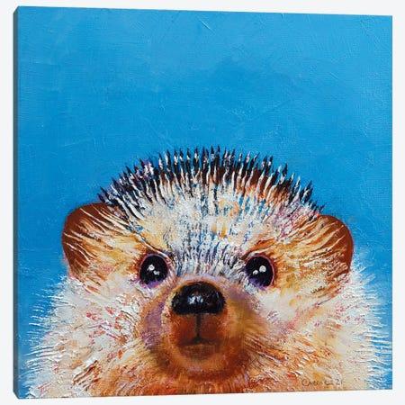 Little Hedgehog Canvas Print #MCR274} by Michael Creese Canvas Art Print
