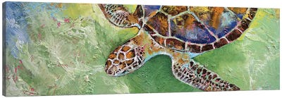 Caribbean Sea Turtle Canvas Art Print