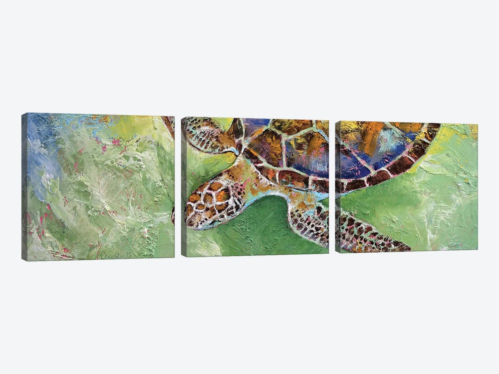 Caribbean Sea Turtle by Michael Creese 3-piece Canvas Art