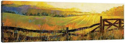 Country Meadow Canvas Print #MCR34