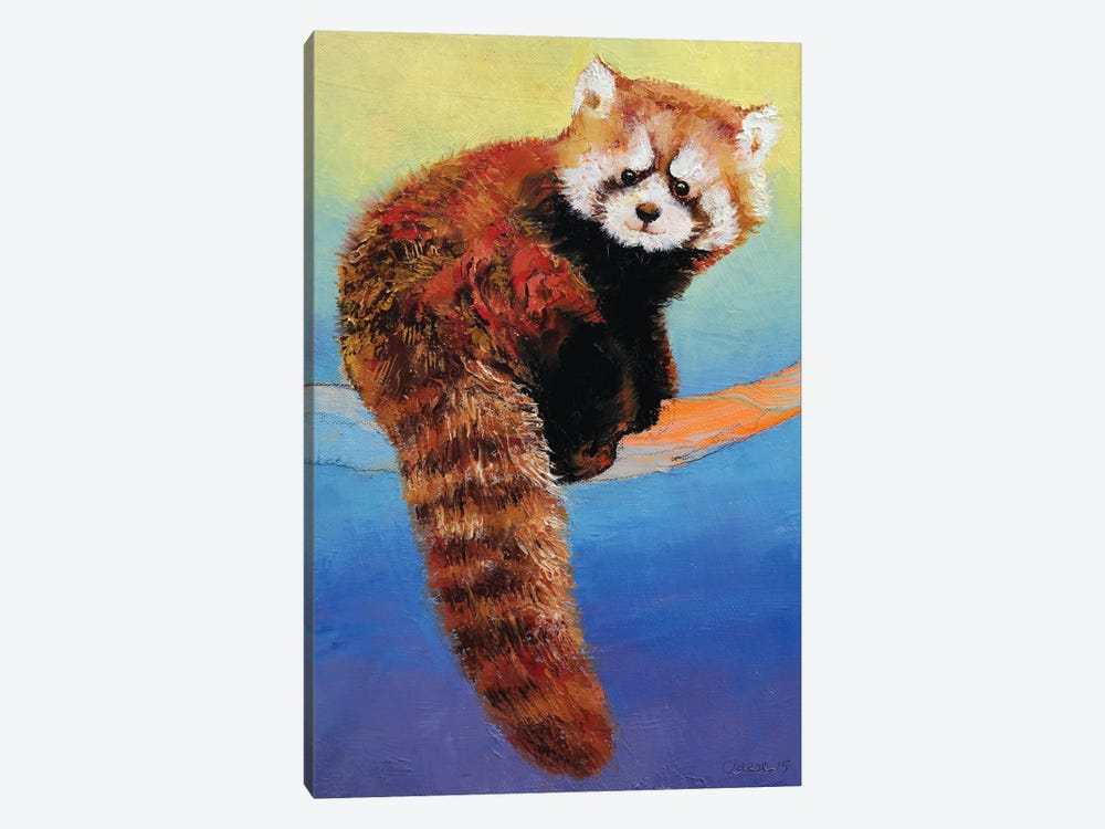 Cute Red Panda by Michael Creese 1-piece Canvas Artwork
