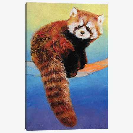 Cute Red Panda Canvas Print #MCR36} by Michael Creese Canvas Wall Art