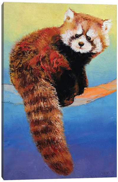 Cute Red Panda Canvas Print #MCR36