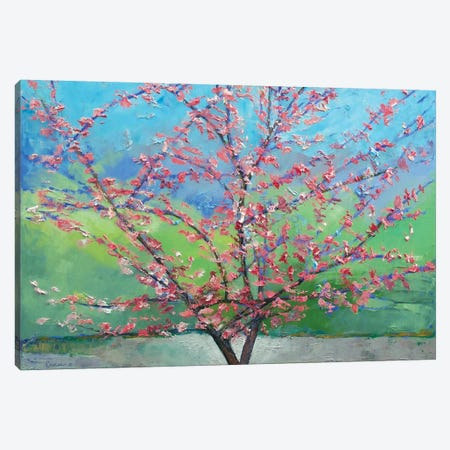 Eastern Redbud Tree Canvas Print #MCR39} by Michael Creese Canvas Art Print