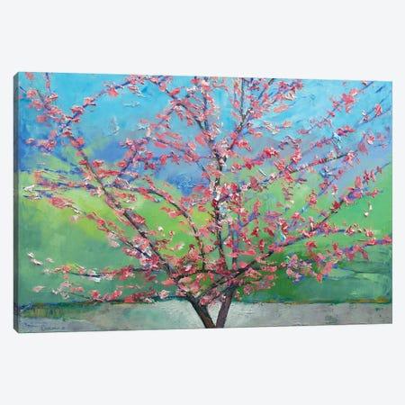 Eastern Redbud Tree Canvas Print #MCR39} by Michael Creese Canvas Art Print