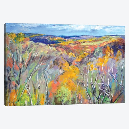 Appalachian Trail Canvas Print #MCR3} by Michael Creese Canvas Artwork