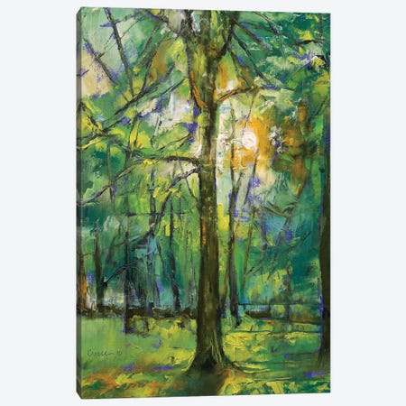 Emerald Twilight Canvas Print #MCR41} by Michael Creese Canvas Wall Art
