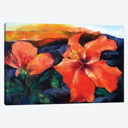 Hibiscus Volcano Canvas Print #MCR51} by Michael Creese Canvas Art Print