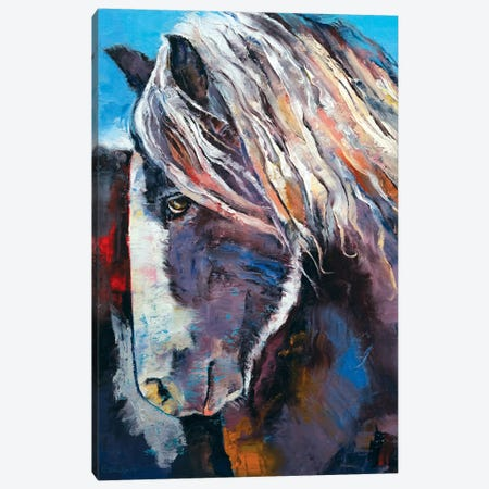 Highland Pony Canvas Print #MCR54} by Michael Creese Canvas Wall Art