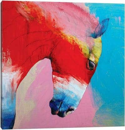 Horse Canvas Print #MCR55
