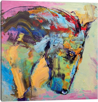 Horse Study Canvas Art Print