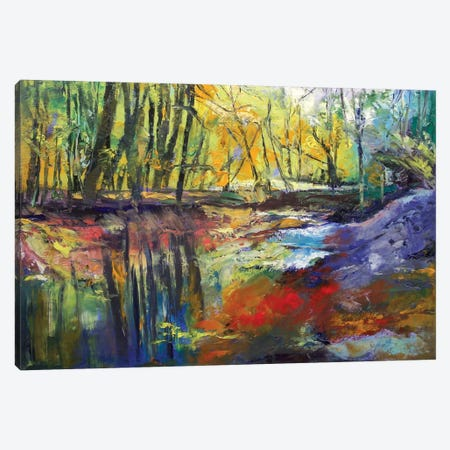 Little Sewickley Creek, 2008 Canvas Print #MCR72} by Michael Creese Canvas Art Print