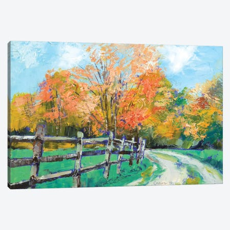 Old Country Road Canvas Print #MCR81} by Michael Creese Canvas Artwork