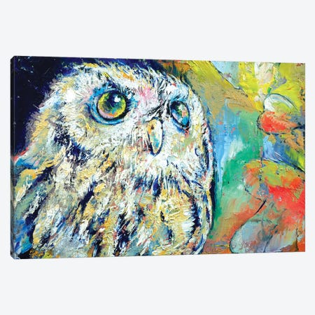 Owl Canvas Print #MCR82} by Michael Creese Canvas Wall Art
