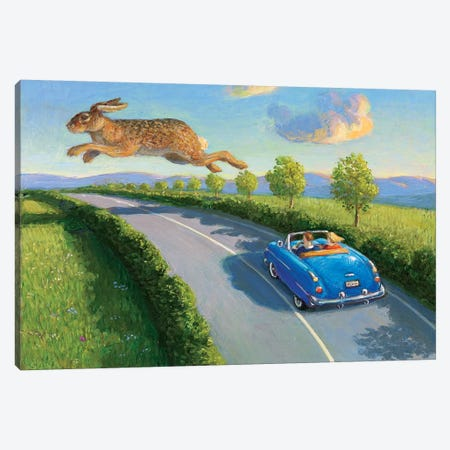 Game Pass Canvas Print #MCS11} by Michael Sowa Canvas Wall Art