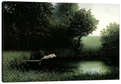 Koehler's Pig I Canvas Art Print