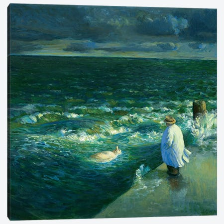 After The Storm Canvas Print #MCS1} by Michael Sowa Canvas Art Print