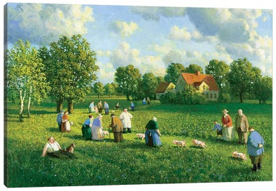 Annual Piglet Race In The Oderbruch, 1907 Canvas Art Print