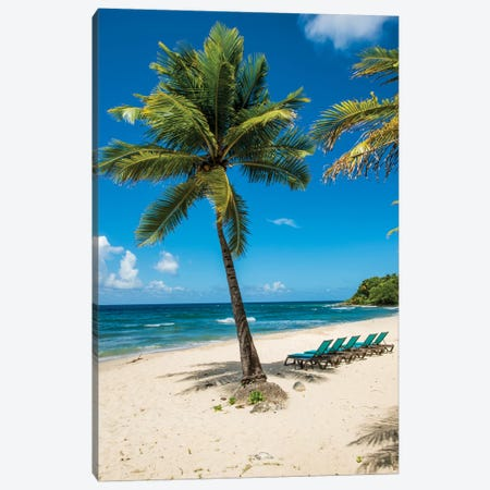Carambola Beach Resort Beach, St. Croix, Us Virgin Islands. Canvas Print #MDE26} by Michael DeFreitas Art Print