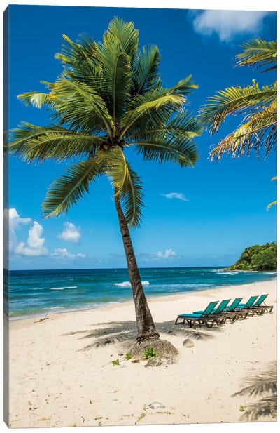 Carambola Beach Resort Beach, St. Croix, Us Virgin Islands. Canvas Art Print