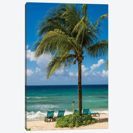 Carambola Beach Resort Beach, St. Croix, Us Virgin Islands. Canvas Print #MDE27} by Michael DeFreitas Art Print