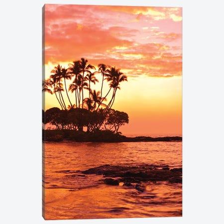 Tropical Sunset, Big Island, Hawai'i, USA Canvas Print #MDE5} by Michael DeFreitas Canvas Wall Art