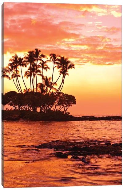 Tropical Sunset, Big Island, Hawai'i, USA Canvas Print #MDE5