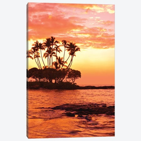Tropical Sunset, Big Island, Hawai'i, USA Canvas Print #MDE5} by Michael DeFreitas Canvas Wall Art