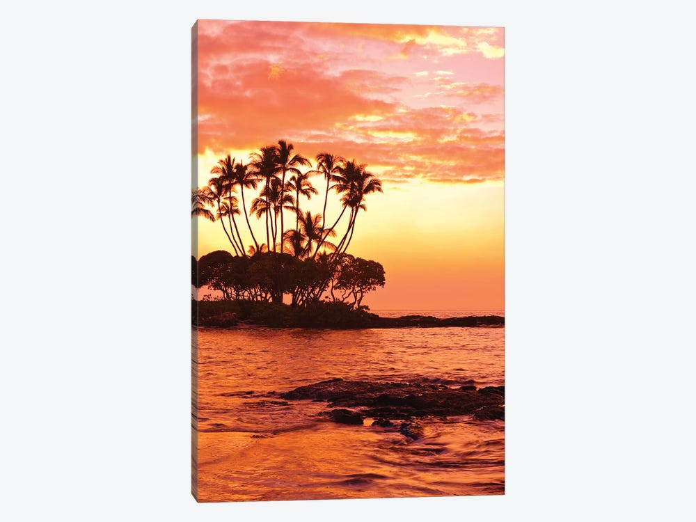 Tropical Sunset, Big Island, Hawai'i, USA by Michael DeFreitas 1-piece Canvas Print