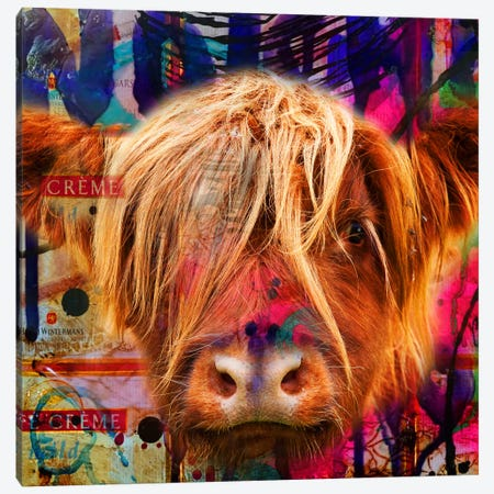 Fancy Cow Canvas Print #MDH4} by Mascha de Haas Canvas Print