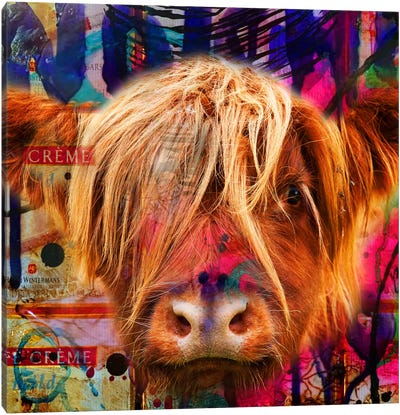 Fancy Cow Canvas Art Print